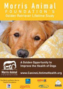 Morris Animal foundation