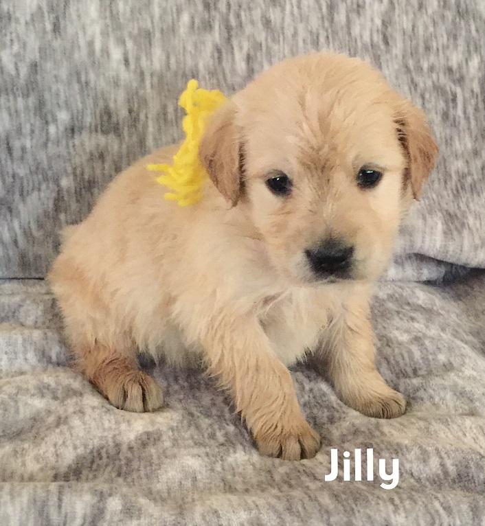 Jillie